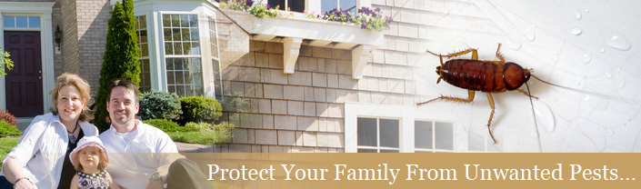 Protect your family from unwanted pests
